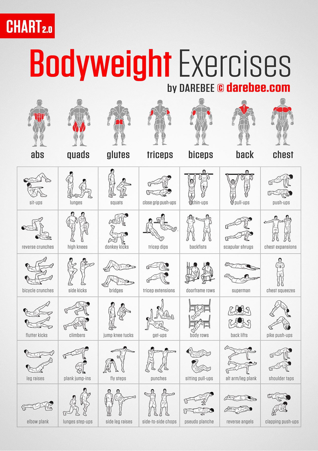 Home Ab Workouts For Women