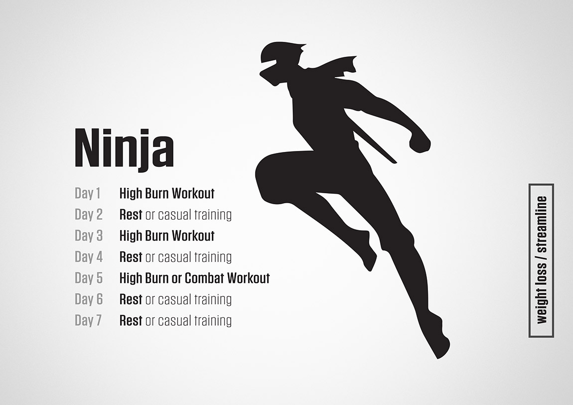 Ninja Training Plan