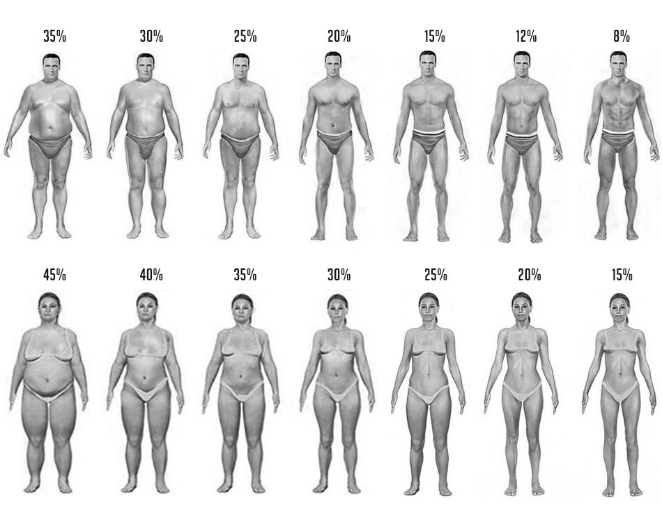 Body Fat Pictures