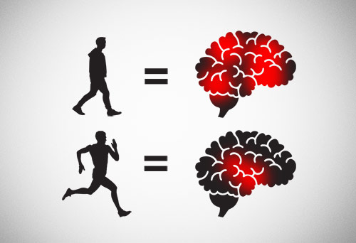 Both light and heavy exercise are good for the brain
