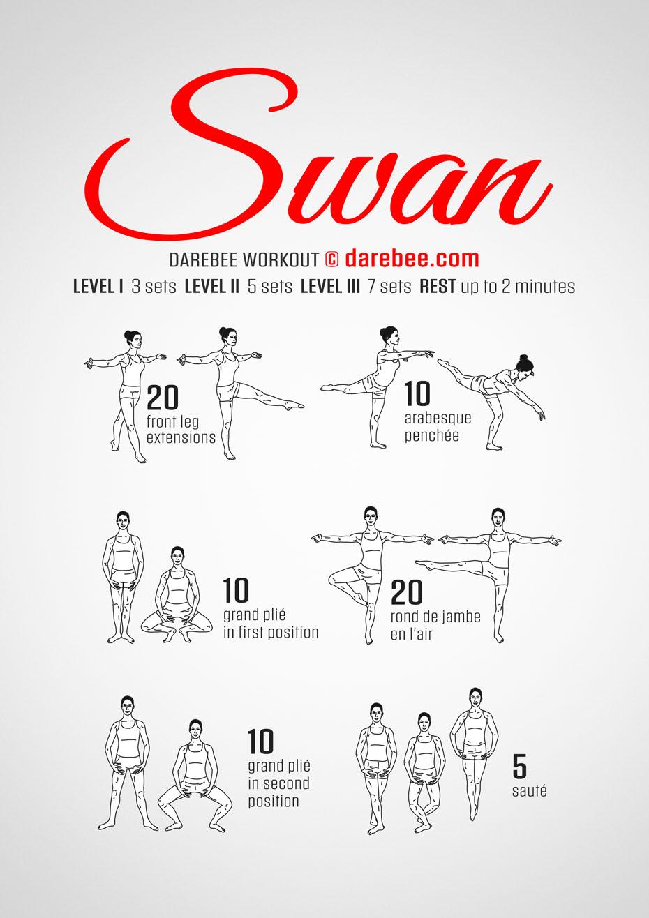 Ballet Quot Swan Quot Workout