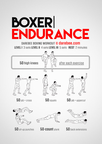 Boxer Endurance Workout
