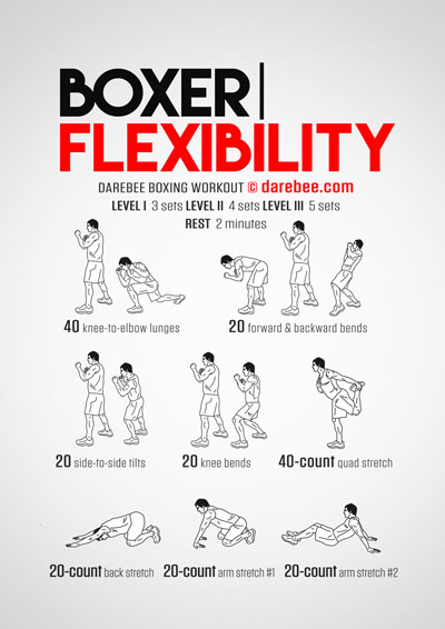 Boxer Flexibility Workout