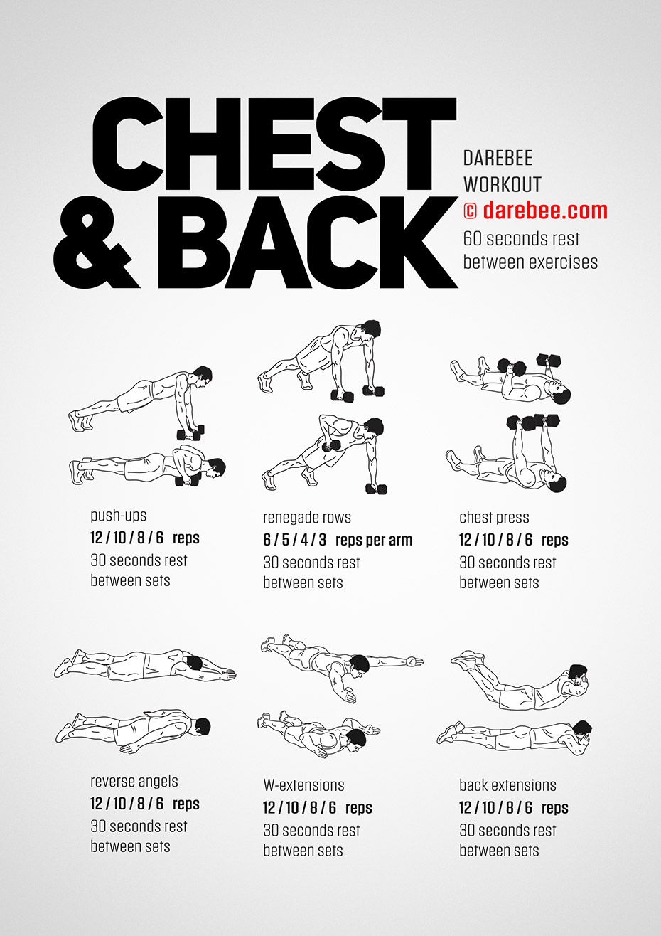Chest Amp Back Workout