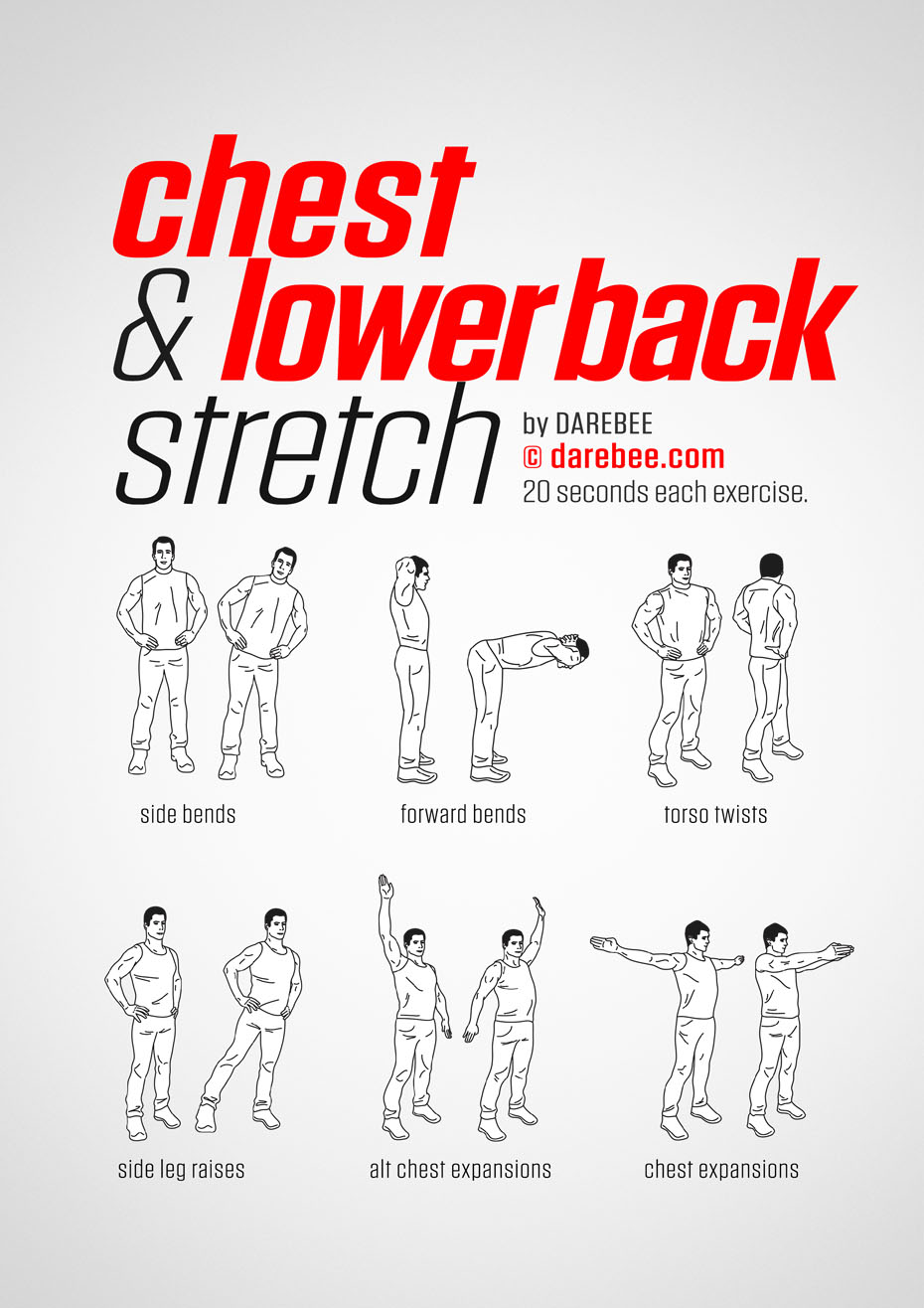 Chest Amp Lower Back Workout
