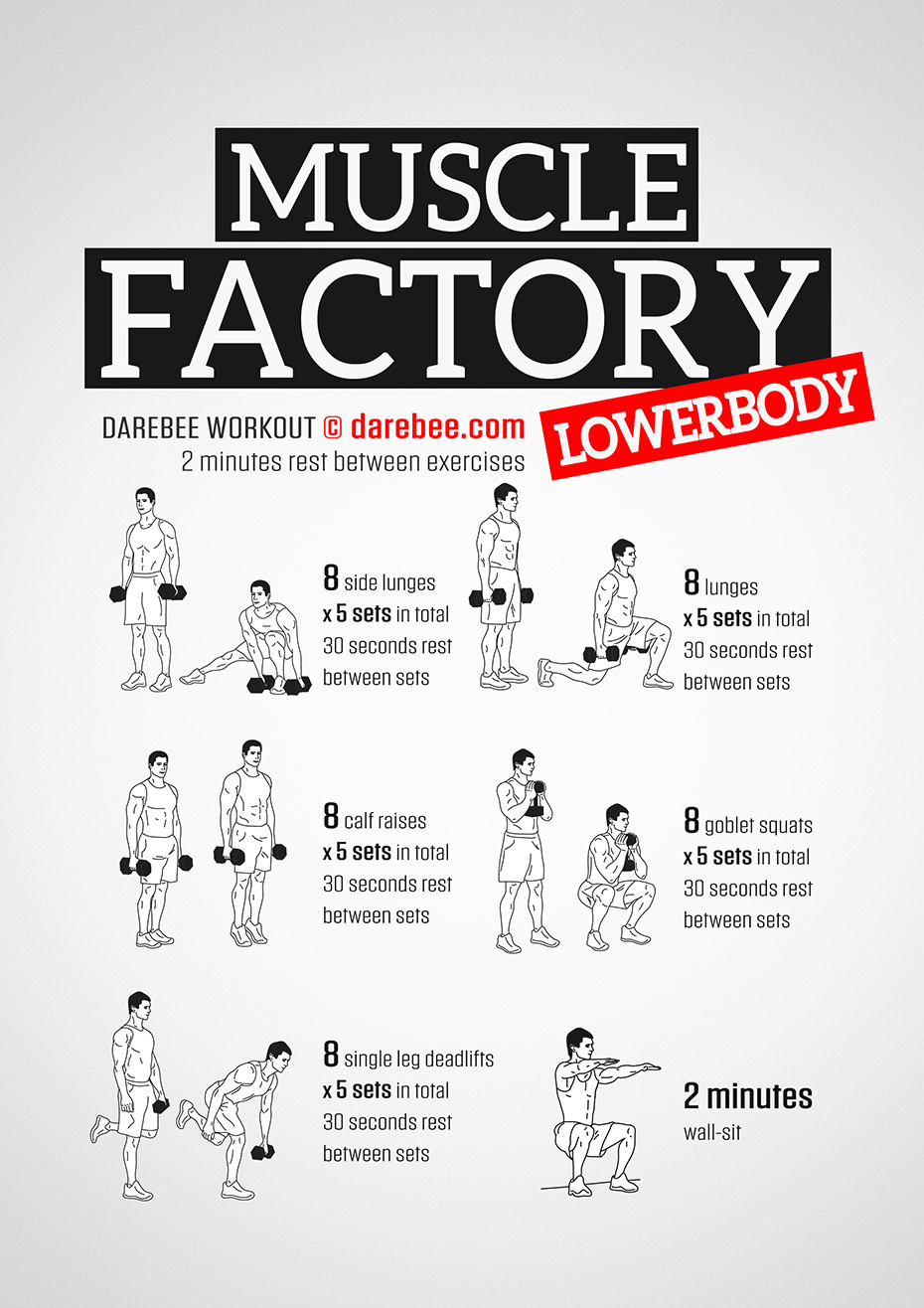 Muscle Factory Lowerbody