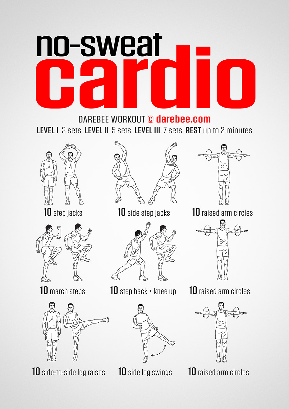 No Sweat Cardio Workout