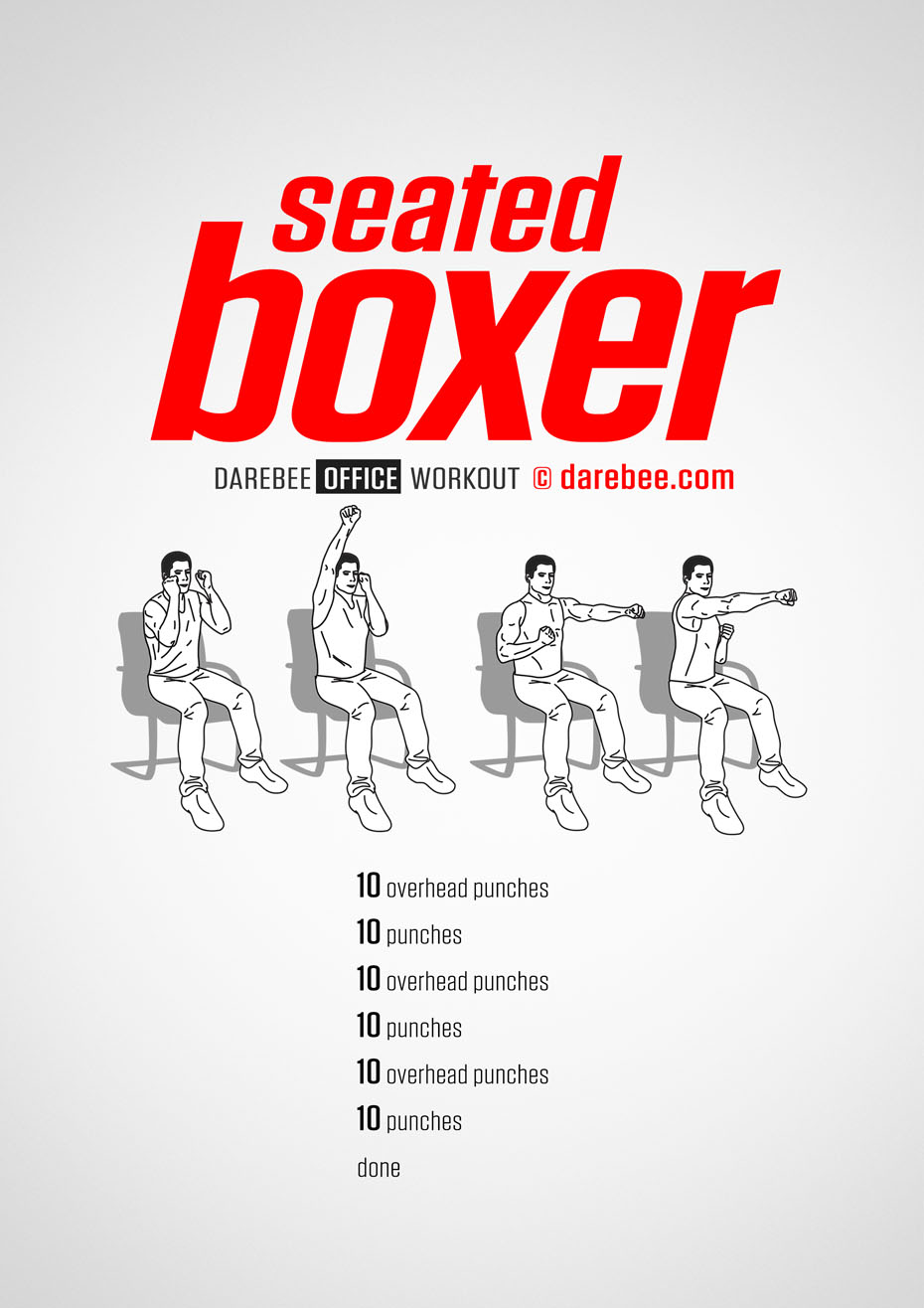 Seated Boxer Workout